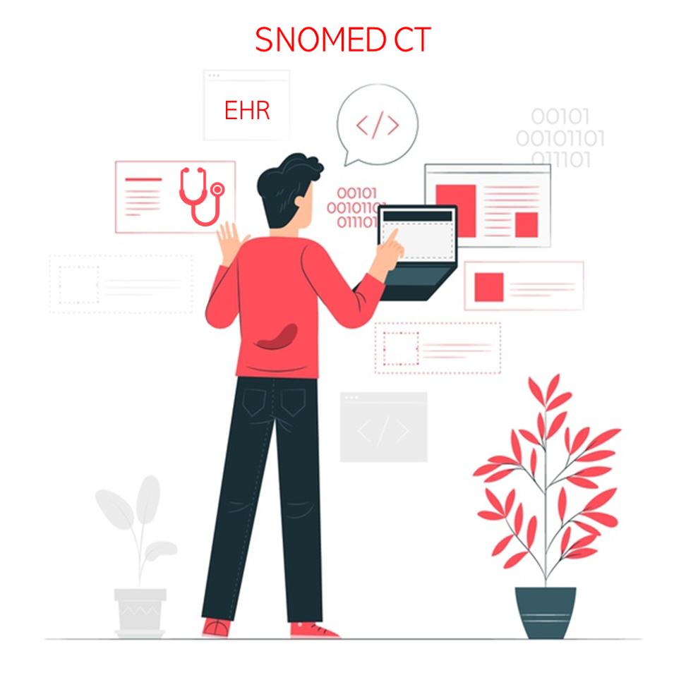 Desarrollo de código SNOMED CT